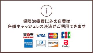 保険治療費以外の自費は各種クレジットカードご利用できます